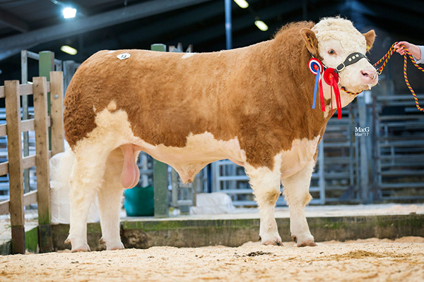 13-Sacombe-Gladiator-4000gns-1663